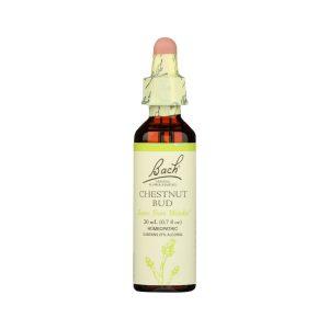 Bach Flower Remedies Chestnut Bud